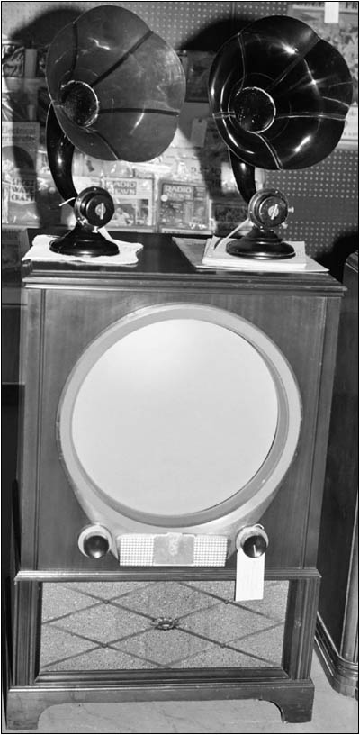 Television set and horn speakers